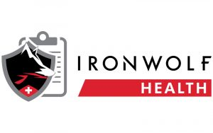 Seagate IronWolf 1 To ST1000VN002