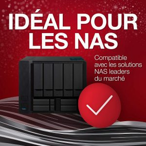 Seagate IronWolf 6 To NAS ST6000VN001