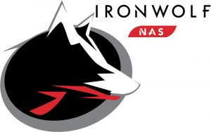 Seagate IronWolf 4 To NAS ST4000VN008