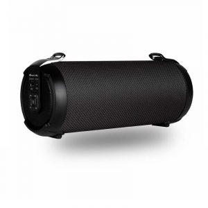 ROLLERTEMPOBLACK-NGS Haut-Parleur Portable Bluetooth 5.0 et TWS 20W